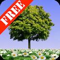 Summer Trees Free icon