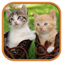 Cute Cats Jigsaw Tile Puzzle icon