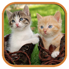 Funny Cats Tile Puzzle icon