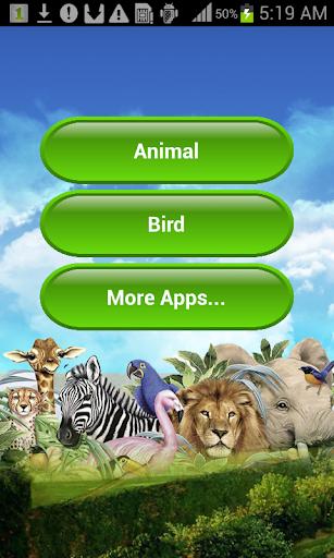 Animal Sounds FREE