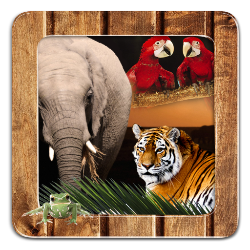 Animal Frames for Pictures 個人化 App LOGO-APP試玩