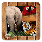 Animal Frames for Pictures
