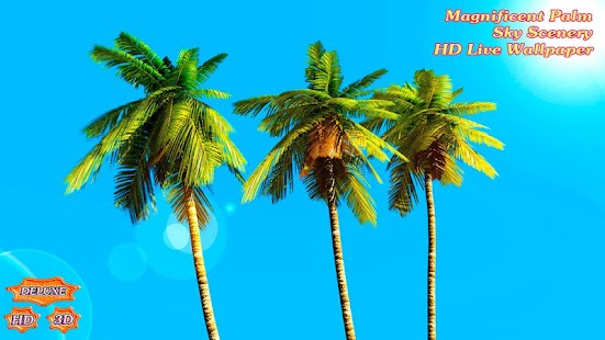 Magnificent Palm Sky Scenery- screenshot thumbnail