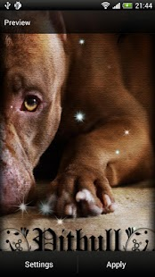 Pitbull Dog Live Wallpaper- screenshot thumbnail