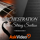 Orchestration: String Section