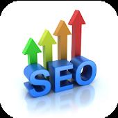 SEO & Webmaster Tool Analyzer