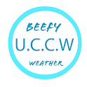 Beefy Weather icon