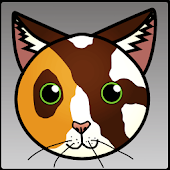 Debug Kitty logcat widget
