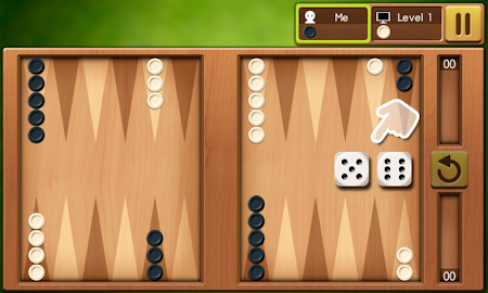 Backgammon King 14.0 screenshot 332326