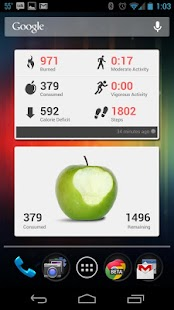 BodyMedia FIT- screenshot thumbnail