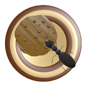 Ant Smasher, Protect - Cookies