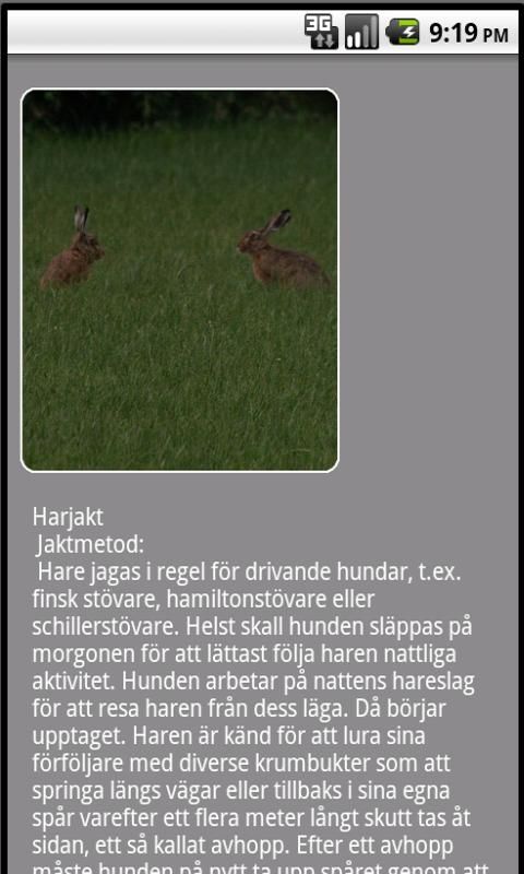 Jakt info Lite- screenshot