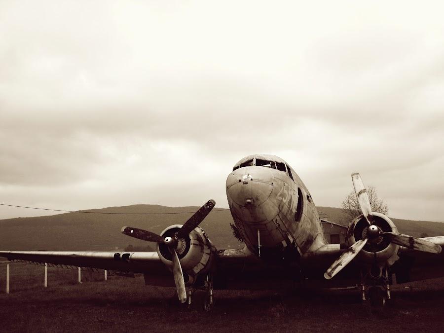 Old war plane by Ja sam Sara - Novices Only Objects & Still Life ( aviation, old, plane, aeroplane, war, time scars,  )