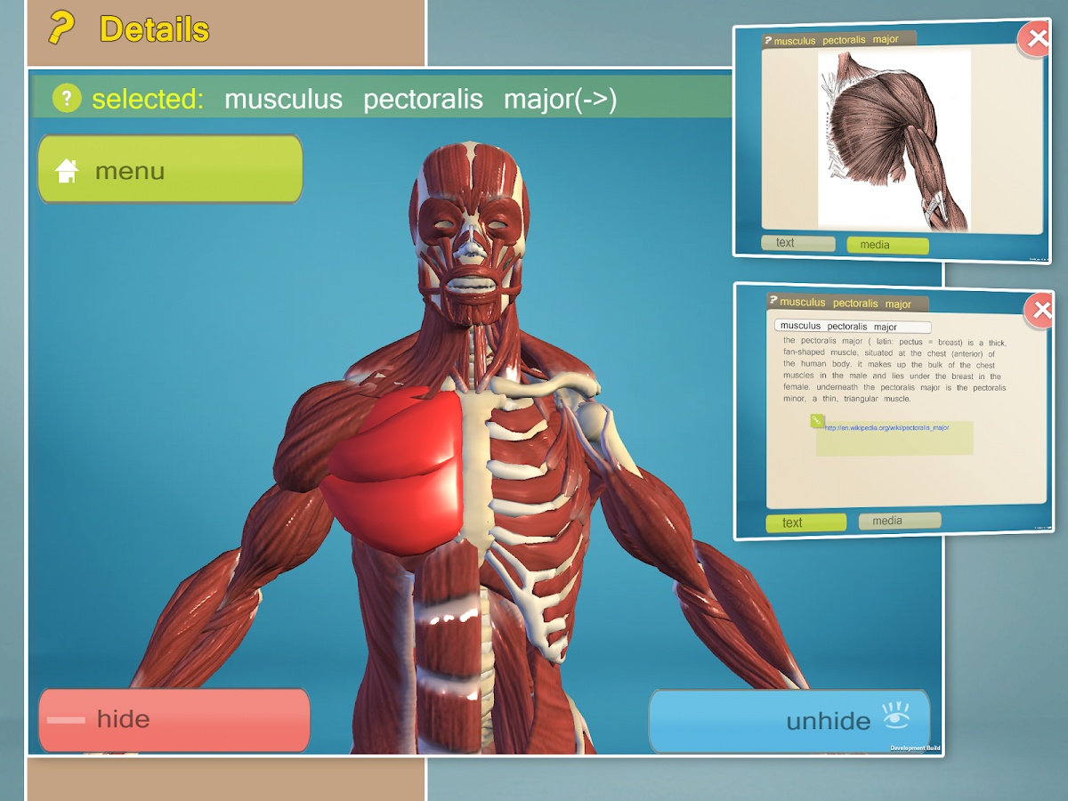 Best iPad App to learn Human Anatomy – iPhone, iPad Air ...