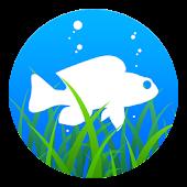 AquariStock