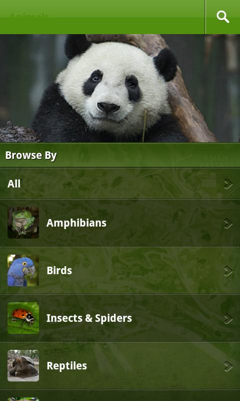 San Diego Zoo- screenshot