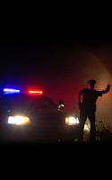Screenshot of TF: Police Lights
