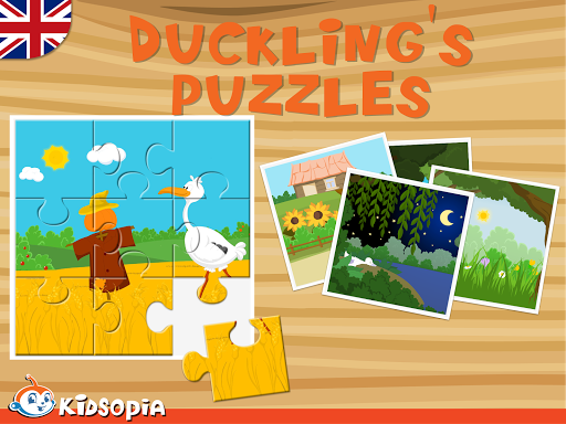 Duckling's Puzzles
