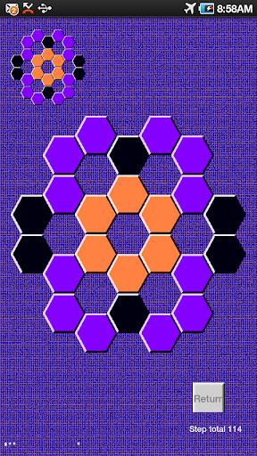 Hexagon R