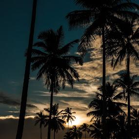 Coqueiros by Mauro César Louzada - Landscapes Sunsets & Sunrises
