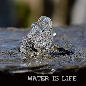 Water is life by Charles KAVYS - Typography Captioned Photos ( water, water is life, fontain, life, black,  )