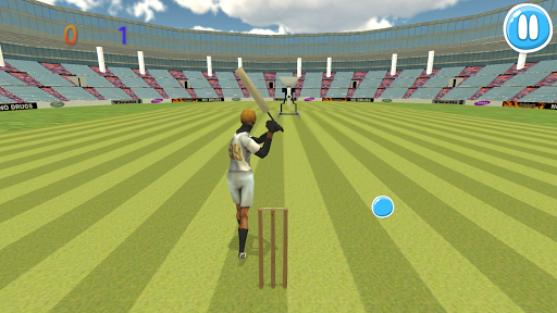 Cricket Match 3D