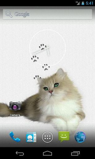 버들강아지 고양이 라이브 배경 화면