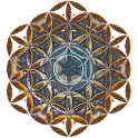 Flower of Life LWP (free) icon