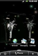 3D Taekwondo