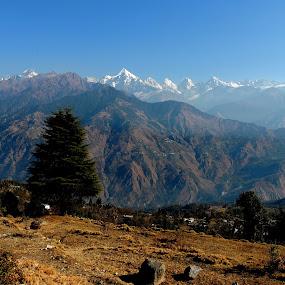 morning @ munsyari.......... by Chandradeep Ghosh - Landscapes Mountains & Hills