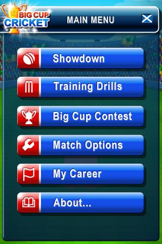 Big Cup Cricket Premium- screenshot