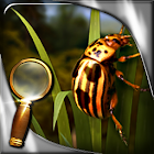 La isla del tesoro HD icon