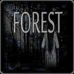Forest v12