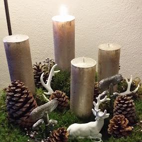 Advent Wreath by Joe Harris - Public Holidays Christmas ( holiday, advent, candles, christmas, wreath, decorations )
