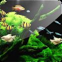 Aquarium 3D (Pro) logo