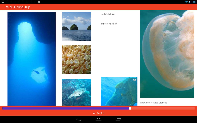 Roxio MediaBook Reader - screenshot