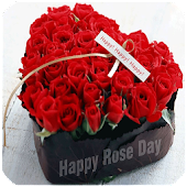 Rose Day SMS Message & Images