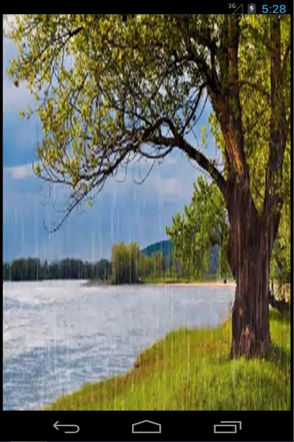Rain Live Wallpaper - screenshot