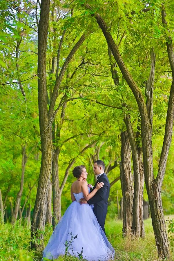 Weed and Trees by Raffael Don - People Couples ( tree, weed, trees, bride, woods, Wedding, Weddings, Marriage,  )