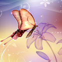 Colorful Butterfly Wallpaper icon