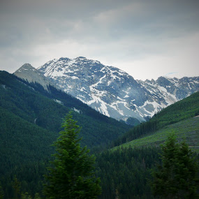 Rocky  Mountains;Canada by Thakkar Mj - Landscapes Mountains & Hills ( mountain, canada, nature, snow, rock,  )