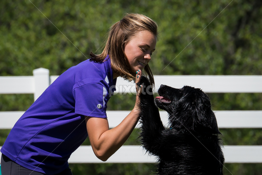 Best Buds by Andrea Silies - Animals - Dogs Playing ( high five, purina farms, paws, dog, trainer,  )