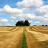Farmland USA Wallpaper