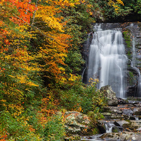 Colors of Fall by Eduardo Llerandi - Landscapes Forests ( running water, orange color, red, fall colors, fall, waterfall, rocks, smoky mountains,  )