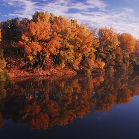 Sea of tranquility by Sámuel Zalányi - Landscapes Waterscapes ( low ebb, hungary, autumn, colors, reflections, tisza, slow flow, , blue, orange. color, fall, color, colorful, nature )
