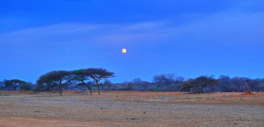 Full Moon on Kraalkop by Erika de Jager - Landscapes Prairies, Meadows & Fields ( #GARYFONGPETS, #SHOWUSYOURPETS )