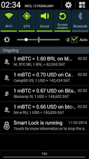 Bitcoin Paranoid- screenshot thumbnail