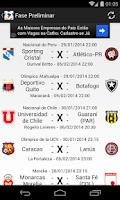 Screenshot of Libertadores 2014