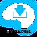 Mandarin Chinese Synapse Demo logo