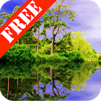 Forest Pond Free